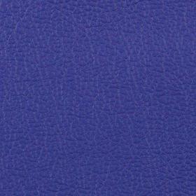 Apollo Bright Blue