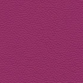 Apollo Leder Bright Purple
