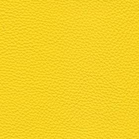 Apollo Leder Bright Yellow