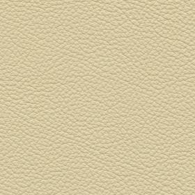 Apollo Leder Ivory