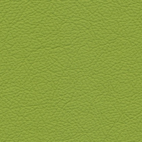 Apollo Leder Lime