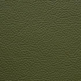 Apollo Olive Green