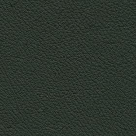 Toledo Leder Verde