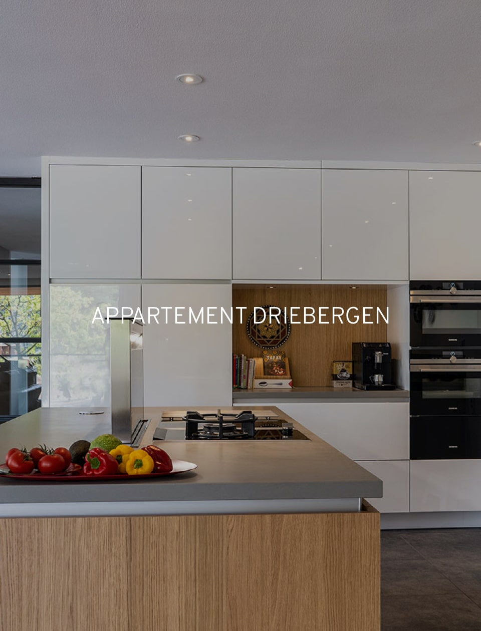 Appartement Driebergen