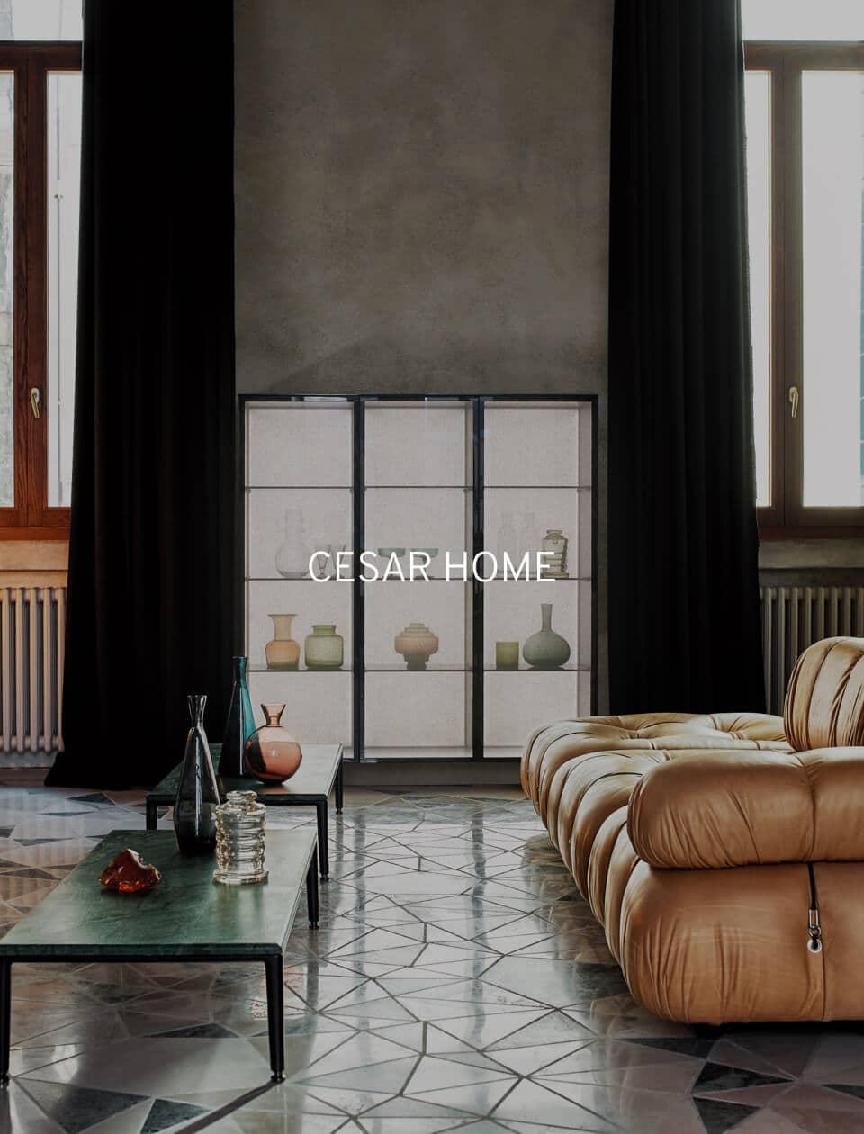 Cesar Home