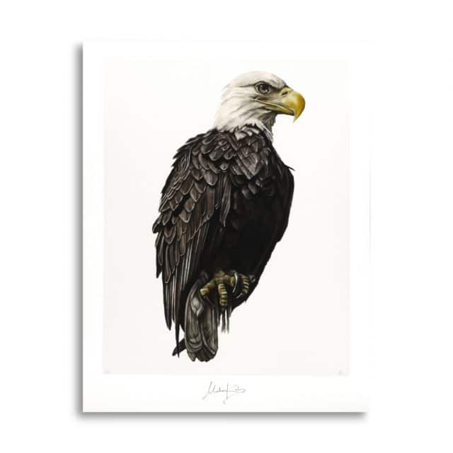 Hand painted eagle art poster