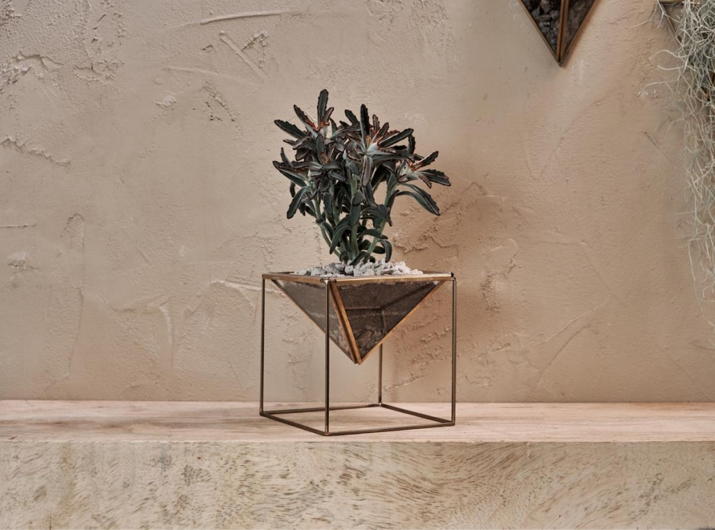Karana planter on standard antique brass
