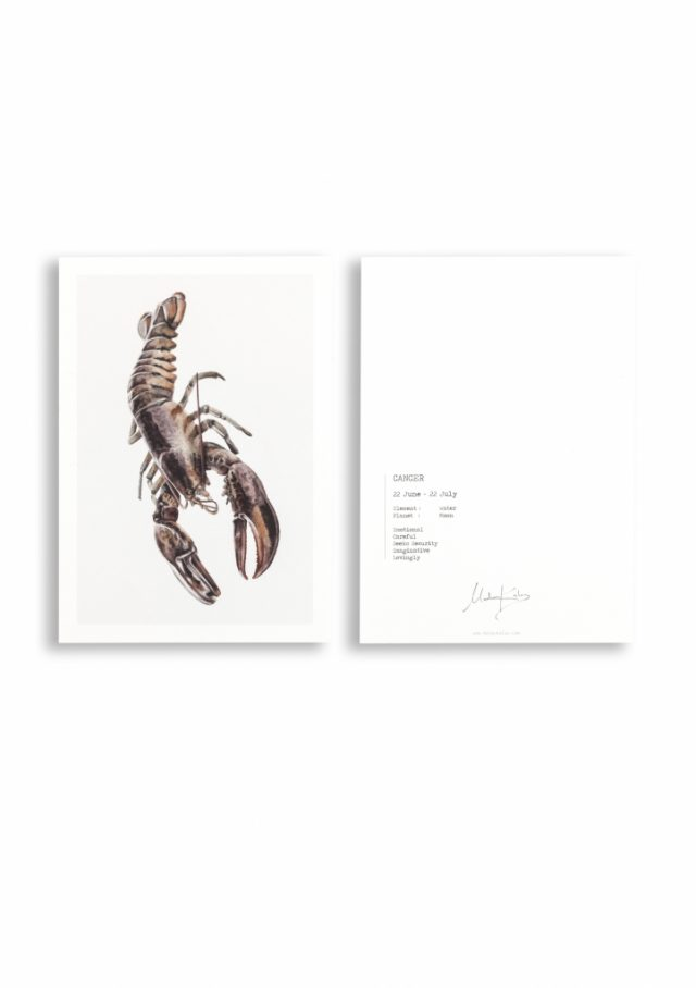 Zodiac sign lobster top card