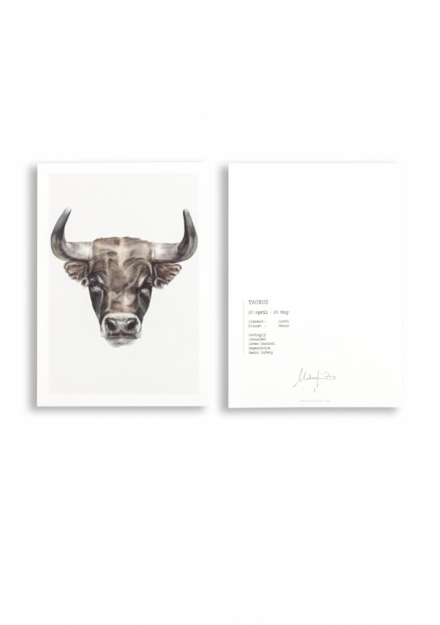 Zodiac sign bull card