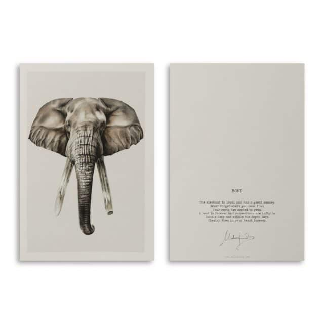 Bond Elephant Art Card Scaled