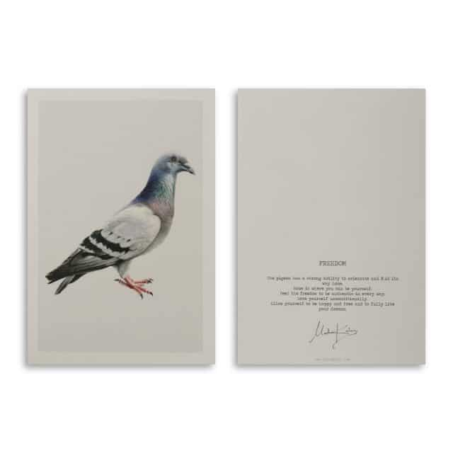 Freedom Pigeon Art Card Scaled