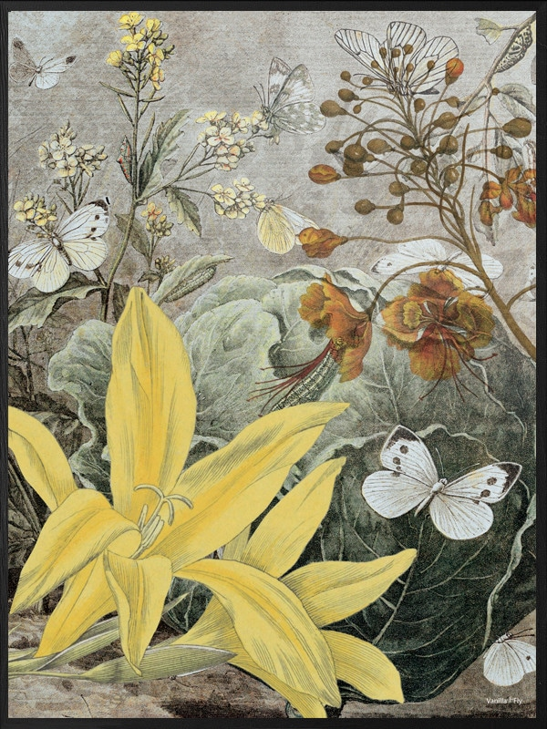 Poster Yellow Lily 50 215 70