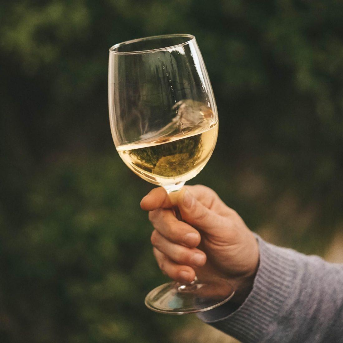 Oneglass Witte wijn Pinot Grigio